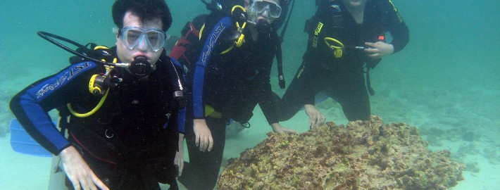 Scuba_Diving_Kish_Island_Iran